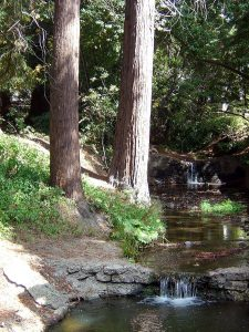 Strawberry_Creek_near_Dwinelle_Hall[2]